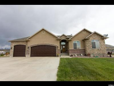 Eagle Mountain Single Family Home For Sale: 2419 E Riley Dr