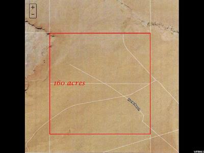 Emery County Residential Lots & Land For Sale: 160 San Rafael Vly