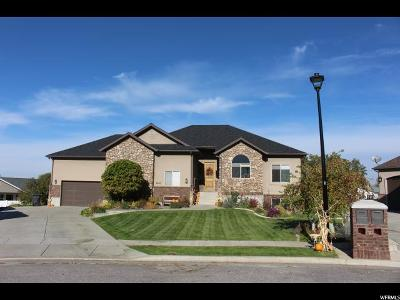 Perry Single Family Home For Sale: 3002 S 1320 W