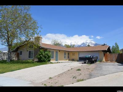 Single Family Home For Sale: 242 N 220 W