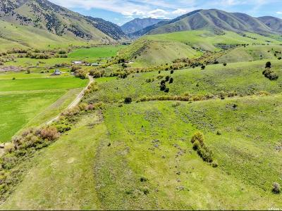 Avon Residential Lots & Land For Sale: 1446 E Canyon Rd S