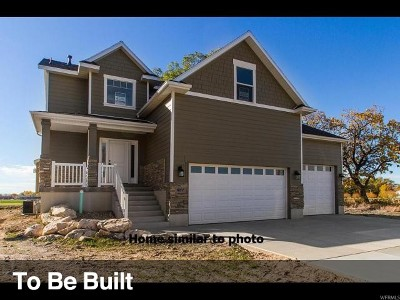 Willard Single Family Home For Sale: 647 S 100 E