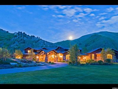 Springville Single Family Home For Sale: 887 S Hobble Creek Canyon Rd