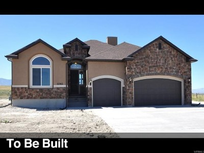 West Valley City Single Family Home For Sale: 6539 W Sunrise Acres Cir