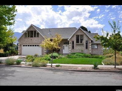 Springville Single Family Home For Sale: 1070 E 300 N