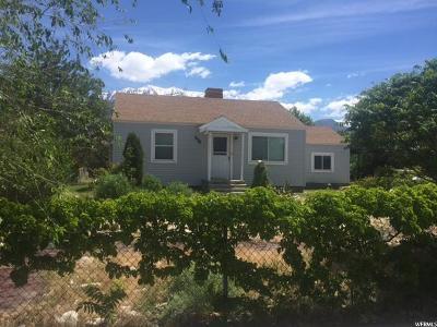 Orem Single Family Home For Sale: 978 N 350 E