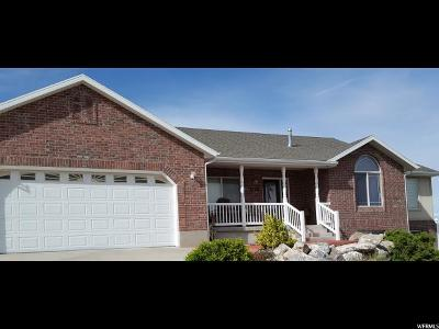 Tremonton Single Family Home For Sale: 2530 W Mountain Rd