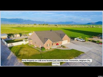 Tremonton Single Family Home For Sale: 10620 N 10800 W