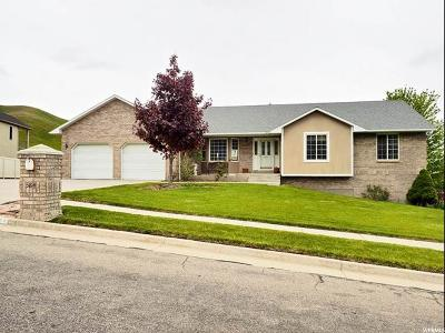 Tooele Single Family Home For Sale: 584 S Elk Meadow Loop E