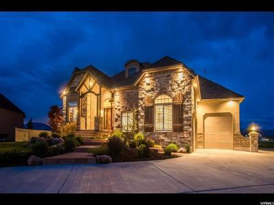Grantsville Single Family Home For Sale: 401 Star Light Ct