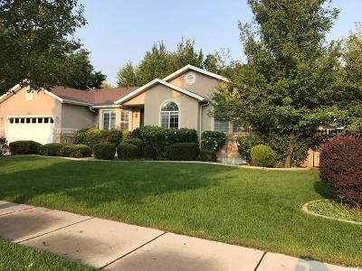 Draper Single Family Home For Sale: 11594 S Harvest Berry Ln
