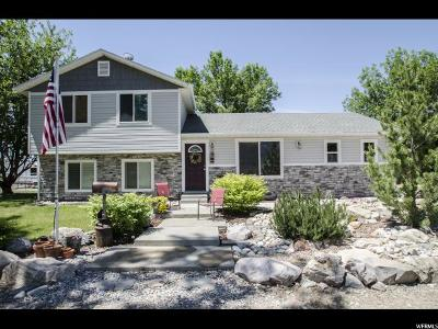 Brigham City Single Family Home For Sale: 3026 W 4600 N
