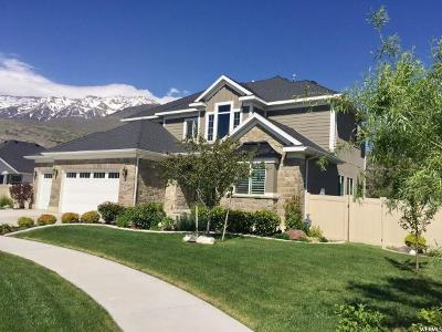 Orem Single Family Home For Sale: 1916 N 430 W