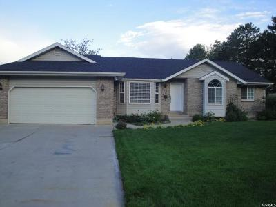 Cedar Hills Single Family Home For Sale: 9861 N 4000 W
