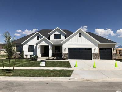 Draper Single Family Home For Sale: 11499 S Windsor River Cv W #111