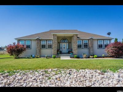 Grantsville Single Family Home For Sale: 162 E Harvest Ln