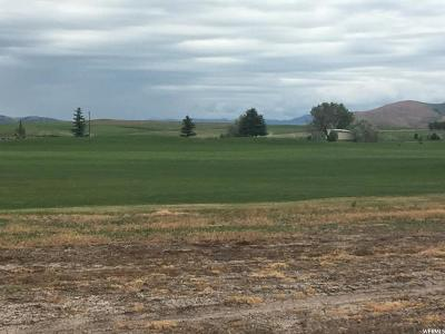 Preston Residential Lots & Land For Sale: 211 E Eagle Way
