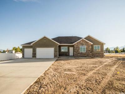 Grantsville Single Family Home For Sale: 408 E Zachary Way #118