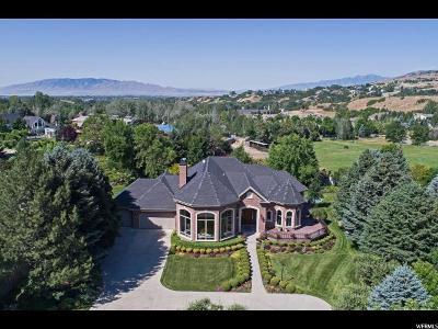 Alpine Single Family Home For Sale: 1100 N Elkridge Ln