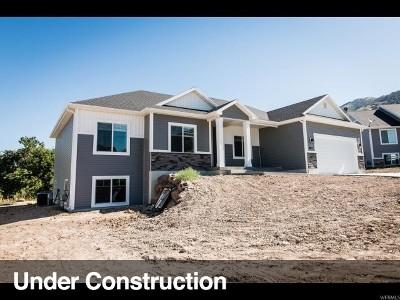 Smithfield Single Family Home Under Contract: 283 S 890 E #13