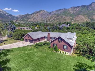 Alpine Single Family Home For Sale: 1116 N Birch Cir