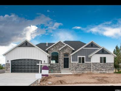 Santaquin Single Family Home For Sale: 153 E 820 S