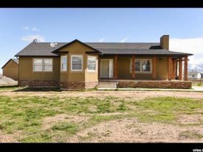 Grantsville Single Family Home For Sale: 867 E Main St N