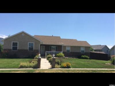Spanish Fork Single Family Home For Sale: 894 E 780 S