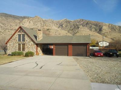 Brigham City Single Family Home For Sale: 776 N 200 E
