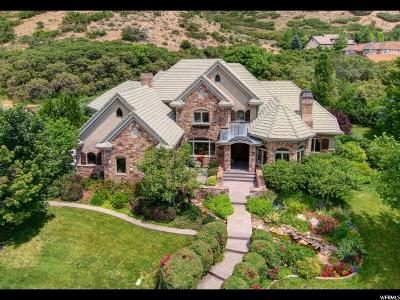 Alpine Single Family Home For Sale: 580 N Bald Mountain Dr