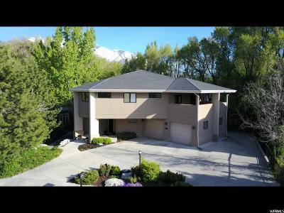 Springville Single Family Home For Sale: 1484 E Pheasant Run Dr