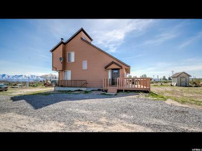 Grantsville Single Family Home For Sale: 682 Highway 138