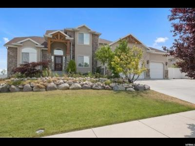 West Valley City Single Family Home For Sale: 4373 S Stone Slab Way W