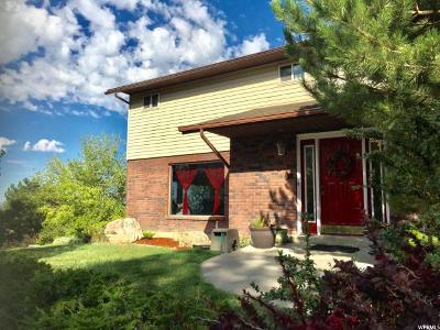 Provo Single Family Home For Sale: 4734 N Mile High Dr
