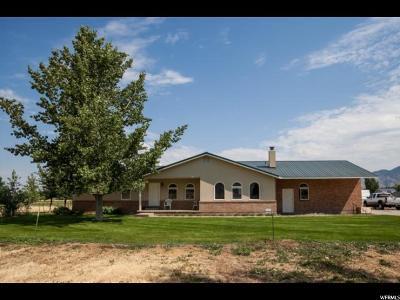 Spanish Fork Single Family Home For Sale: 2317 E 7200 S