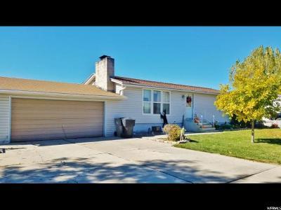 Orangeville Single Family Home For Sale: 445 N Cottonwood Vw