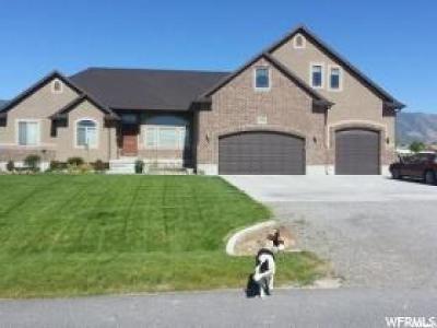 Erda Single Family Home For Sale: 3866 N Rose Springs Rd. W