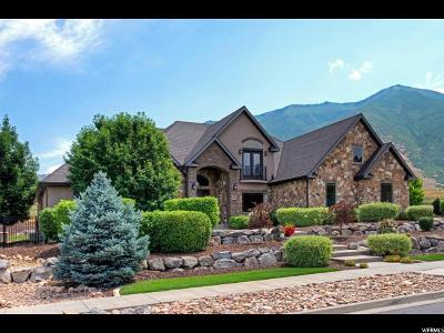 Mapleton Single Family Home For Sale: 2523 S Brush Canyon Dr