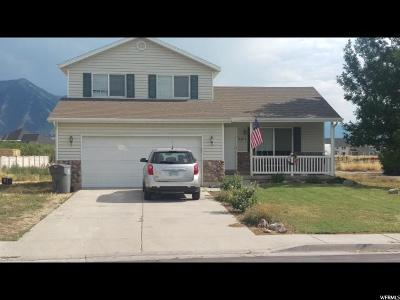 Mapleton Single Family Home For Sale: 2201 W 325 S