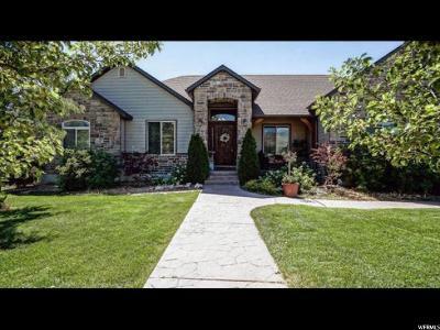 Salem Single Family Home For Sale: 75 N 100 E