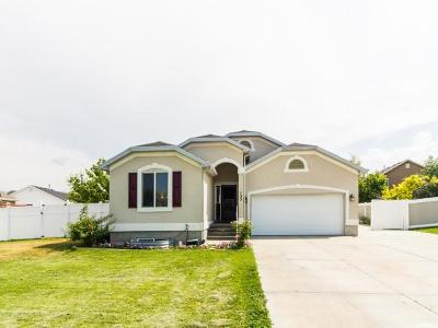Stansbury Park Single Family Home For Sale: 133 Dory Ln