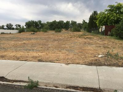 Emery County Residential Lots & Land For Sale: 515 W Canyon Ln