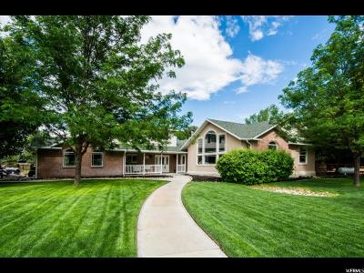 Mapleton Single Family Home For Sale: 1696 N 300 W