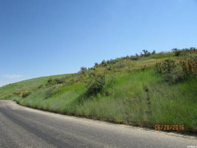 Avon Residential Lots & Land For Sale: 11740 S South Canyon Rd