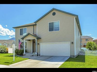 Tooele Single Family Home For Sale: 893 N Flint Cir W