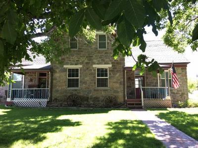 Willard Single Family Home For Sale: 197 S 100 W