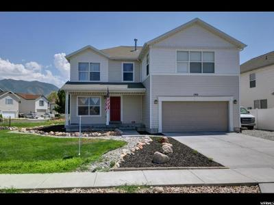 Stansbury Park Single Family Home For Sale: 502 E Wheat Dr N