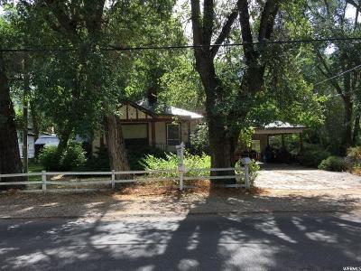 Draper Single Family Home For Sale: 12359 S Relations St E