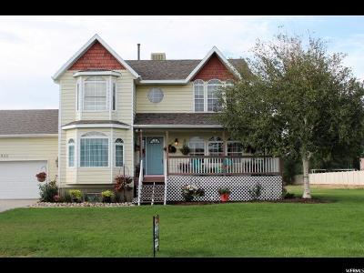 Draper Single Family Home For Sale: 533 E 12000 S