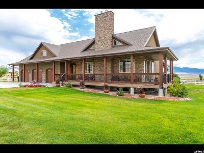Stockton Single Family Home For Sale: 1141 S Hogans Rd